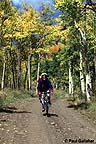 Mountain bikers with fall colors