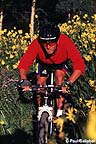 Mountain biker in wildflowers