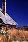 Old tin-roofed barn with fall grasses.