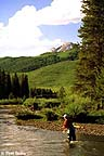 Fly fishing around Crested Butte