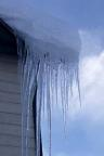 Icicles form in cold winter weather